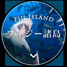 フィジー諸島