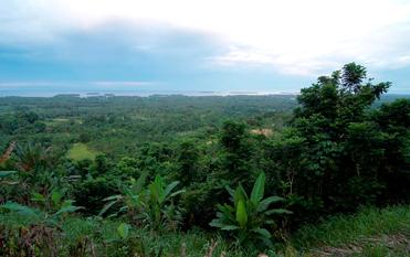 ノースコースト観光高台からの眺め